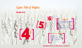 Cyber Bill of Rights 4-6