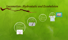 Locomotion : Hydrostatic and Exoskeleton