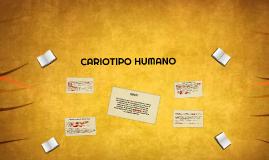 Copy of CARIOTIPO HUMANO