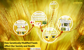 Copy of How Genetically Modified Foods Affect Our Society