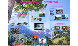 Copy of Contaminacion Ambiental