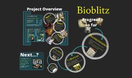 Bioblitz Overview