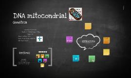 DNA mitocondrial