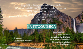 Copia de Copy of LA FITOQUIMICA