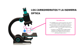 LOS CARBOHIDRATOS Y LA ISOMERIA  OPTICA
