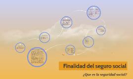 Copy of Finalidad del seguro social