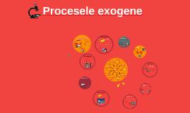 Procesele exogene