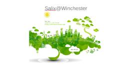 Salix Presentation
