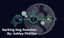 Barking Dog Reaction