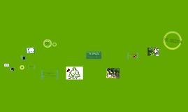 Copy of EKU Green Crew _Display