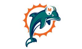 Dolphins Test Run