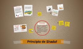 Principio de Shaduf