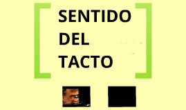 Copy of sentido del tacto