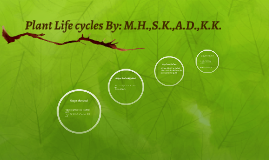 plant life cycle group 2 By: m.h.,S.k.,A.D.,K.K.