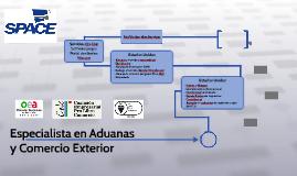 Especialista en Aduanas y Comercio Exterior