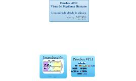Introduccion_taller_2014_Pruebas_VPH