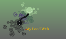 My Food Web