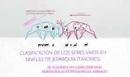 CLASIFICACIÓN DE LOS SERES VIVOS EN NIVELES DE JERARQUÍA (TAXONES).