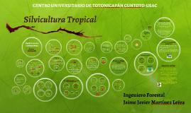 Copy of Silvicultura Tropical