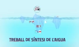 TREBALL DE SÍNTESI DE L'AIGUA