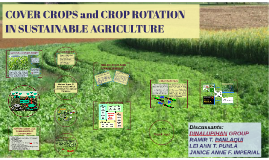 COVER CROPS and CROP ROTATION IN SUSTAINABLE AGRICULTURE