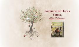 Copy of Santuario de Flora y Fauna.