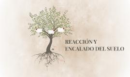 REACCIÓN Y ENCALADO DEL SUELO