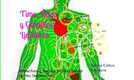 Copy of Anatomia de Timo, Bazo y Ganglios Linfaticos
