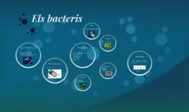 Els bacteis AMRR