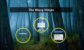 The Blacq Ninjas