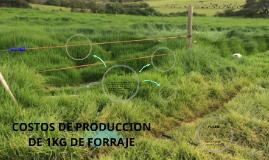 COSTOS DE PRODUCCION DE 1KG DE FORRAJE