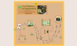 Sede Villas Preescolar los Andes
