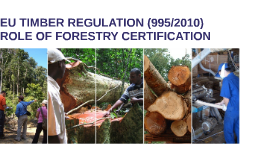EU TIMBER REGULATION AND ROLE OF FORESTRY CERTIFICATION