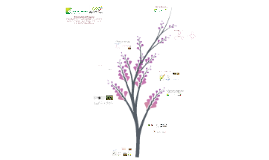 Copy of Copy of Proyecto Fortalecimiento Quinua - CMMC