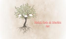 Matri.z foda de Muebles   Sur