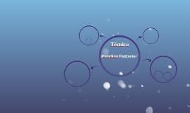 Palatina Posterior