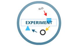experiment blog