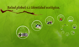 Copy of Identidad ecológica.