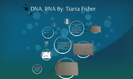 DNA, RNA By: Tiarra Fisher