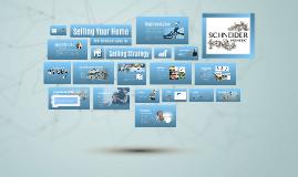 Schneider Estates Selling Strategy (S)