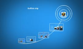 Buffalo trip