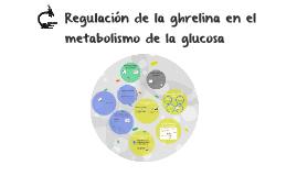Regulación de la grelina en el metabolismo de la glucosa