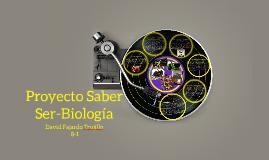 Proyecto Saber Ser-