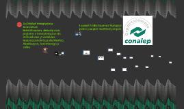 Copy of Copy of actividad integradora