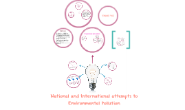 National & International attemps to Environmental Pollution