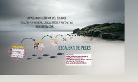 Copy of ESCALERA DE PECES