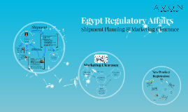 Egypt Regulatory Affairs