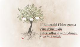 La Educació Física com a eina inclusiva a Catalunya.