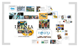 IRENIA Games as pedagogical tools
