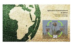Agricultural Development in Africa
